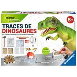 Traces de dinosaures