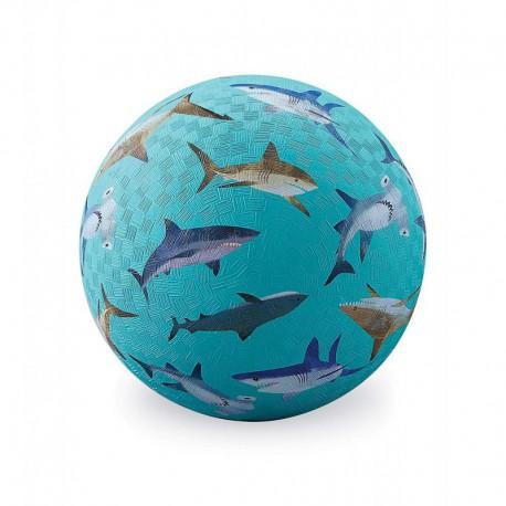 Balle : sharks