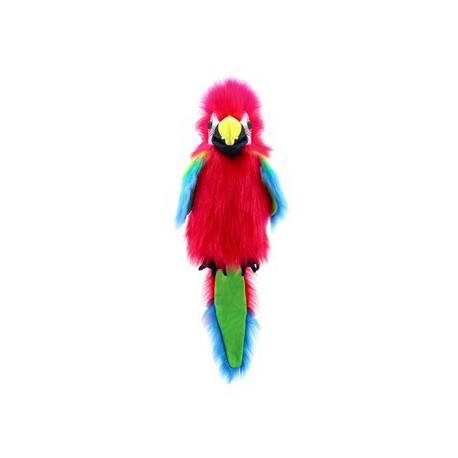 Perroquet d'Amazonie