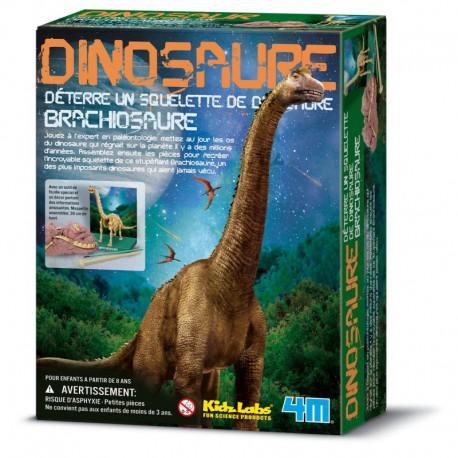 Déterre ton dinosaure : brachiosaure