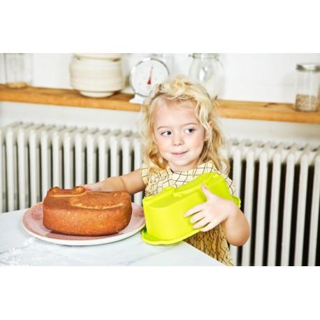 Anatole : moule à gâteau