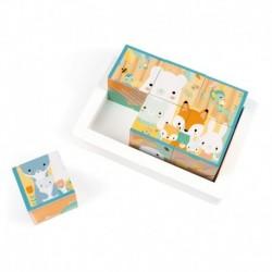 Barquette 6 Cubes Pure - J05158