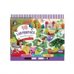 Auzou - Livre : 48 Labyrinthes dans les contes