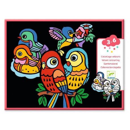 Coloriages des petits : bébés oiseaux