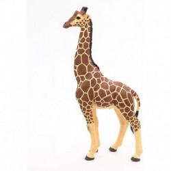 Papo - La vie sauvage : Girafe mâle