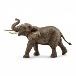 Eléphant d'Afrique mâle