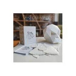 CARAPACES - JEU DE CONSTRUCTION - 100 PCS - BLANC
