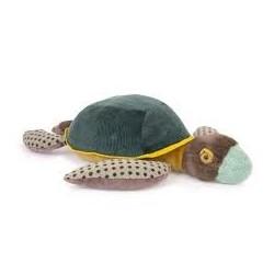 MOULIN ROTY - Grande tortue Tout autour du monde