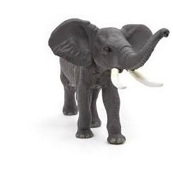 PAPO - LA VIE SAUVAGE - Éléphant