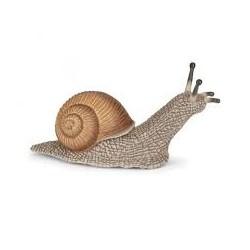 PAPO - LA VIE SAUVAGE - Escargot