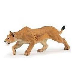 PAPO - LA VIE SAUVAGE - Lionne chassant